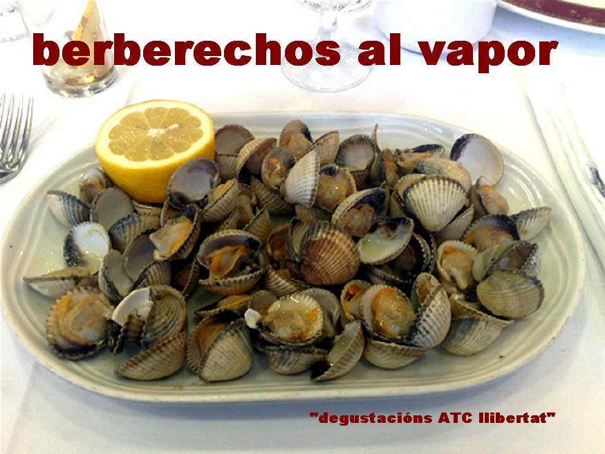 Berberechos al vapor degustacions atc llibertat la - Cocinar berberechos al vapor ...